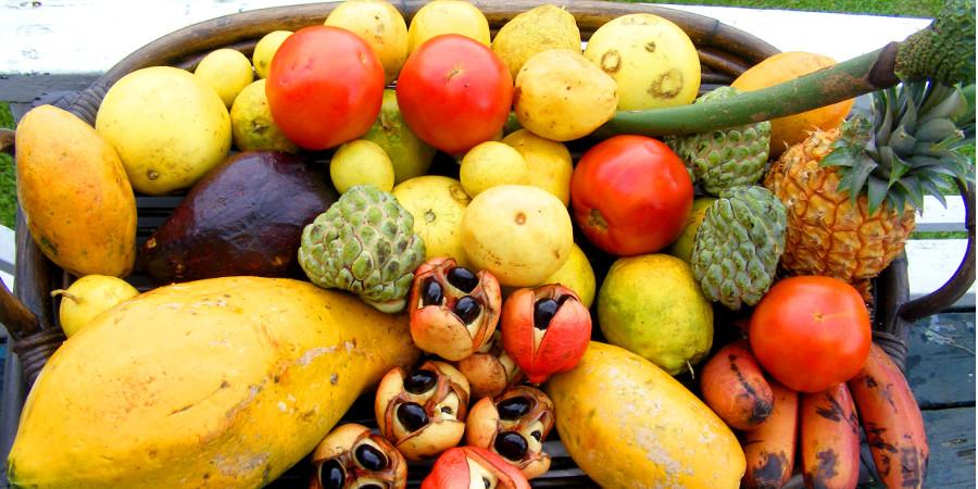 Jamaican-Fruit-Basket_Interior