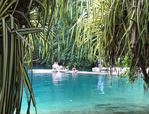 Bamboo Raftng on the Blue Lagoon in Portland…nothing more exotic and blissful. Change your World by sharing Ours…this is how we do it!